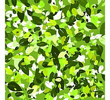 Leafy Green Photographic Print
