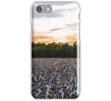 Cotton Field 11 iPhone Case/Skin