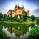 Bojnice Castle by Zoltán Duray
