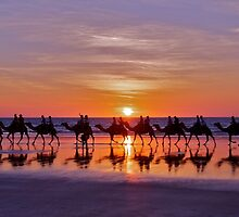 Ships in the Desert, Cable Beach by Karina  Cooper