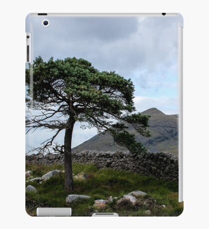 Mourne Country. Northern Ireland iPad Case/Skin