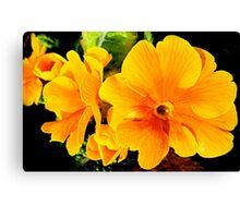 SOLD - ORANGE FLOWER ENHANCED Canvas Print