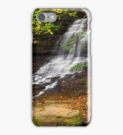 Honey Run Waterfall iPhone Case/Skin