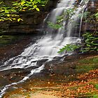 Honey Run Waterfall by Kenneth Keifer