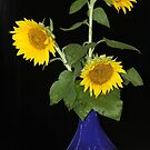 sunflowers in blue by ANNABEL   S. ALENTON