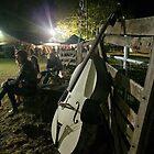 Evening at the Dorrigo Folk and Bluegrass Festival by Clare Colins