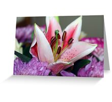 Exquisite lily Greeting Card