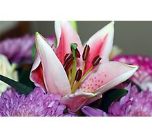 Exquisite lily Photographic Print