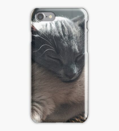 Brothers asleep iPhone Case/Skin