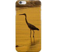 Fijian Heron iPhone Case/Skin