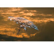 Celestial Mirage Photographic Print