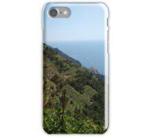 Terrazze on Cinque Terre iPhone Case/Skin