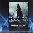 The Dark Terrier Rises by billfox256