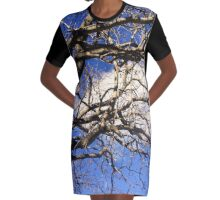 Seen Against the Blue Skies of Spring Graphic T-Shirt Dress