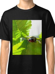 Patterned Beetle Classic T-Shirt