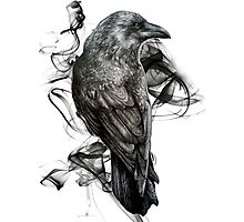 crow gothic bird raven realism drawing sketch tattoo Photographic Print