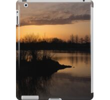 Sundown with Bare Branches iPad Case/Skin
