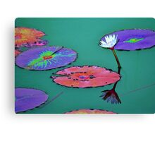 Waterlily reflections Canvas Print