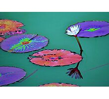 Waterlily reflections Photographic Print