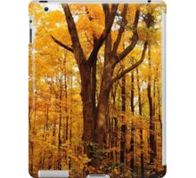 A Golden Autumn Day iPad Case/Skin