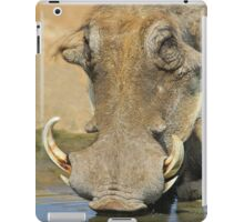 Warthog Pleasure - Quench of Life and Joy iPad Case/Skin