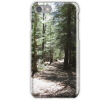 Forest Trail iPhone Case/Skin