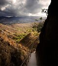 Diamond Head Trail and Vista by Alex Preiss