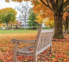 Dartmouth Hanover Green in Autumn by Edward Fielding