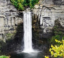Taughannock Falls View From the Top by Christina Rollo