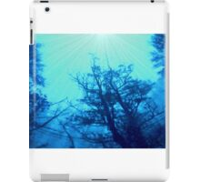 View from a Farmhouse Window iPad Case/Skin