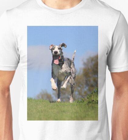Running great dane Unisex T-Shirt