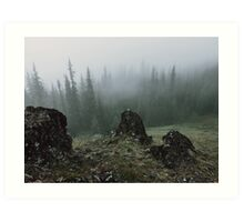 Olympic Peninsula Fog Art Print