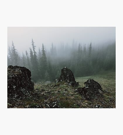Olympic Peninsula Fog Photographic Print