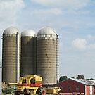 Harvest-Ready by Monnie Ryan