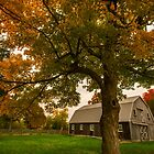 Fall has Arrived on the Farm by Katie Butler
