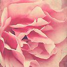 Folds of Beauty by Jo Williams