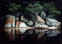 Tidal River, Wilson's Promontory    by Roz McQuillan
