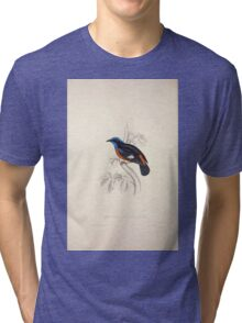 John Gould A Century of Birds from the Himalaya Mountains 1831 019 Phoenicura Ciclorhyncha Tri-blend T-Shirt