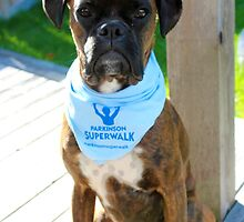 Parkinson SuperWalk Team Mascot by Jeanette Muhr