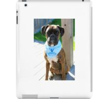 Parkinson SuperWalk Team Mascot iPad Case/Skin