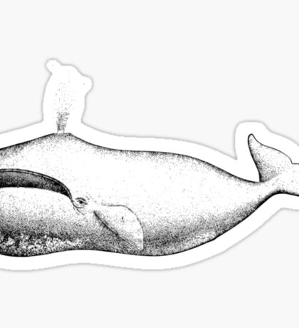 Vintage Bowhead Whale Illustration Sticker