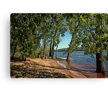 St Croix River Shoreline Canvas Print