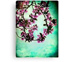 As blossoms bloom Canvas Print
