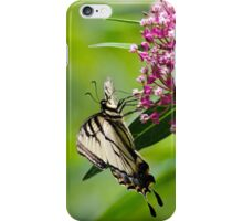 Beautiful Swallowtail Butterfly iPhone Case/Skin