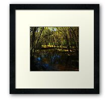 Autumn at Afton State Park Framed Print