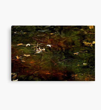 Abstract of the St Croix River 01 Canvas Print