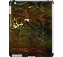 Abstract of the St Croix River 01 iPad Case/Skin