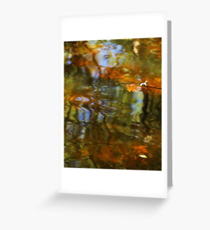Abstract of the St Croix River 02 Greeting Card