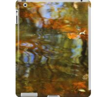 Abstract of the St Croix River 02 iPad Case/Skin