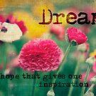 A little Dream by Jo Williams